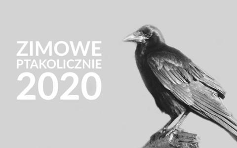 Zimowe Ptakoliczenie 2020